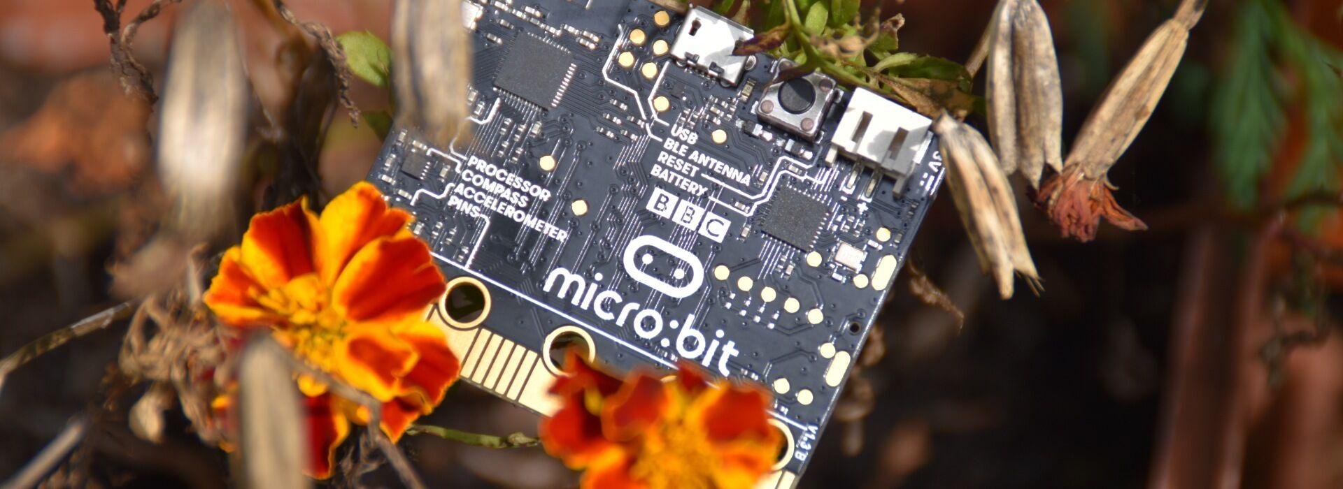 micro:bit csomagok